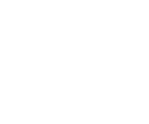 MISSION, Customer Satisfaction Ownership Forward Outlook, VIEW