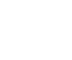 CORE COMPETENCY, Coverage Resource System Experience, VIEW