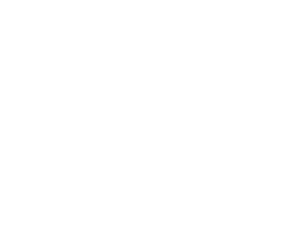 SERVICE PROCESS, Center Service Onsite Service DISTRIBUTION/DELIVERY, VIEW