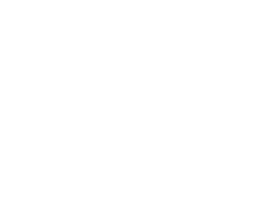 OUR PARTNERS, Global Clients, Domestic Clients, VIEW